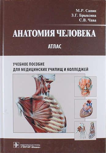 Учебник По Атлас По Анатомии Синельникова