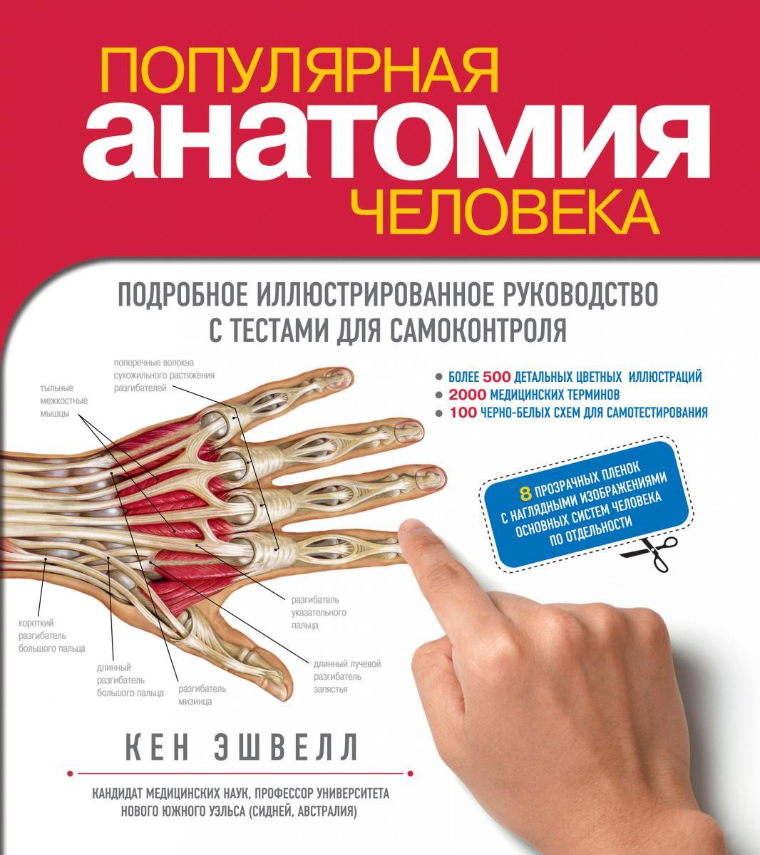 анатомия человека книга иваницкий скачать