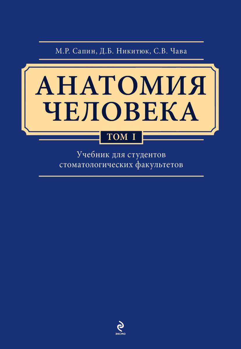 Голень Википедия