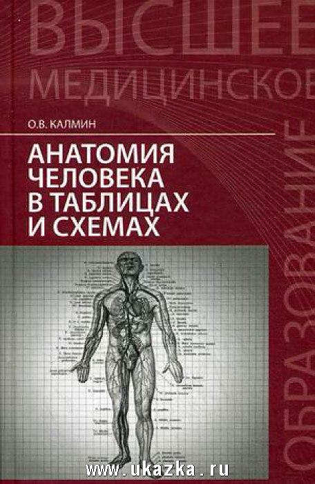 Книга для чтения по анатомии скачать