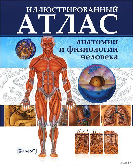 Анатомия человека самусев селин учебник